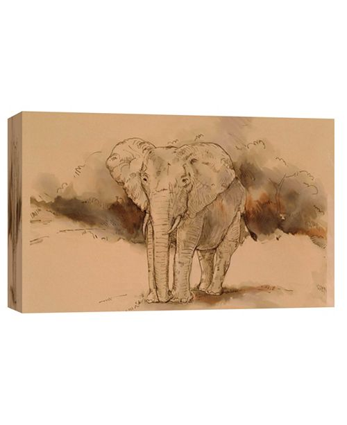 PTM Images Elephant Angle Decorative Canvas Wall Art