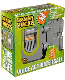 Voice Activated Safe