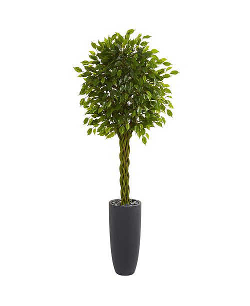 Nearly Natural 6.5' Braided Ficus Artificial Tree in Cylinder Planter