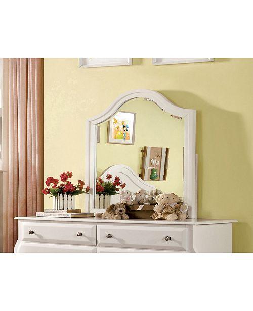 Furniture of America Palon Transitional Mirror