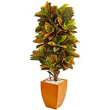 5.5' Croton Artificial Plant in Orange Planter - Real Touch
