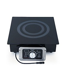 SPT Built-In (Hold Only) Induction Warmer