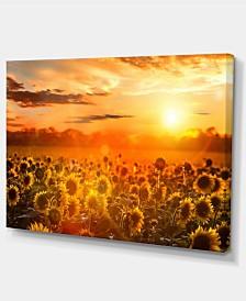 "Designart Yellow Sunset Over Sunflowers Floral Photography Art - 32"" X 16"""