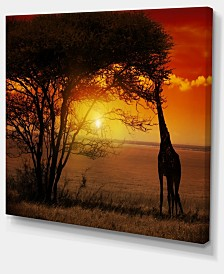 "Designart Typical African Sunset With Giraffe Oversized African Landscape Canvas Art - 20"" X 12"""