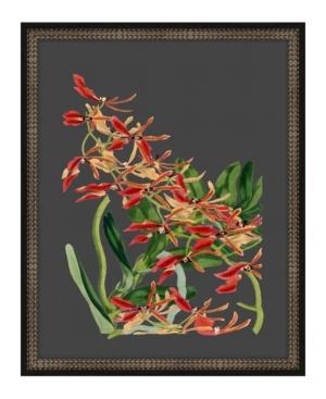 Beautiful Botanical on Black Vii Framed Giclee Wall Art - 17