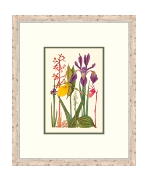 Cottage Flowers Vi Framed Giclee Wall Art - 21