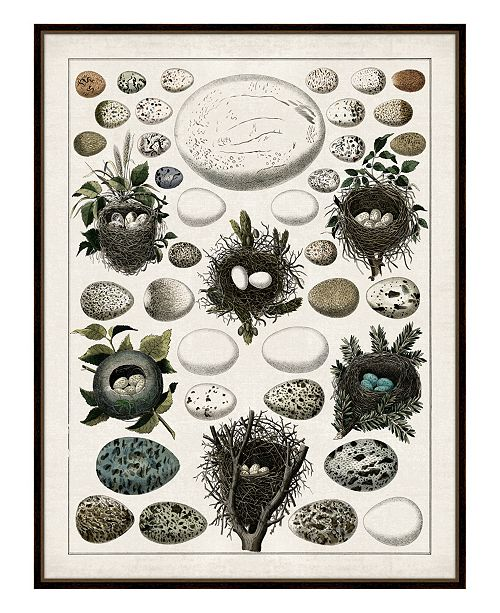 Aerie I Framed Giclee Wall Art - 36 x 47 x 2