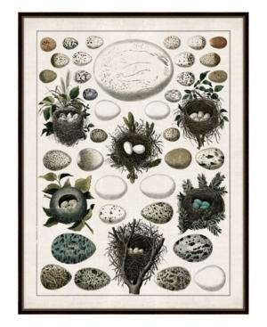 Aerie I Framed Giclee Wall Art - 36