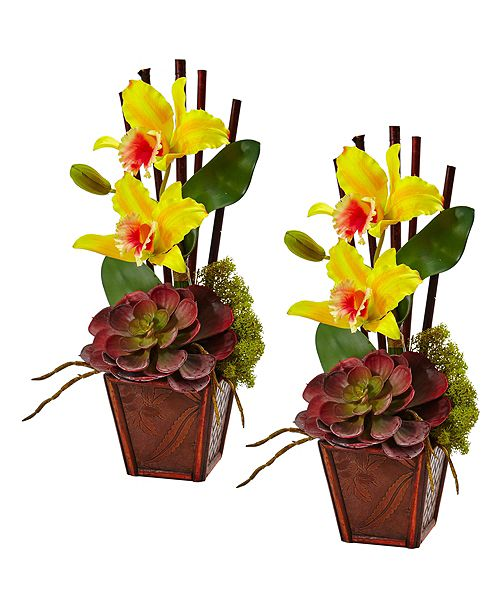 Nearly Natural Cattleya Orchid and Succulent Arrangement, Set of 2