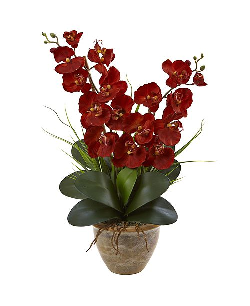Nearly Natural Double Phalaenopsis Harvest Silk Orchid Arrangement in Ceramic Vase