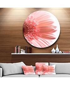 "Designart 'Large Pink Daisy Flower Petals' Disc Floral Metal Circle Wall Art - 23"" x 23"""