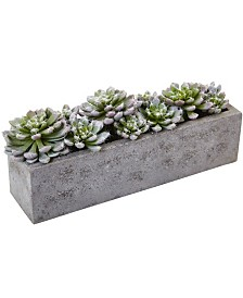 Nearly Natural Succulent Garden w/Textured Concrete Planter
