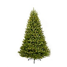 International 10 ft. Pre-Lit Franklin Fir Artificial Christmas Tree with 1300 Clear UL listed Lights