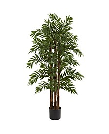 4' Parlour Palm Tree