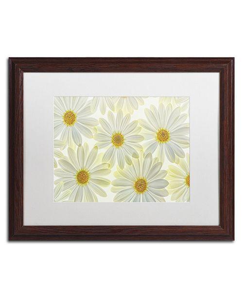 "Trademark Global Cora Niele 'Daisy Flowers' Matted Framed Art - 20"" x 16"" x 0.5"""