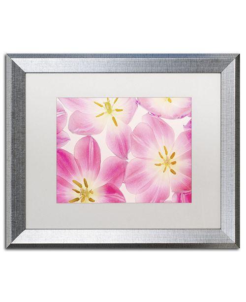 "Trademark Global Cora Niele 'Three Cerise Pink Tulips' Matted Framed Art - 20"" x 16"" x 0.5"""