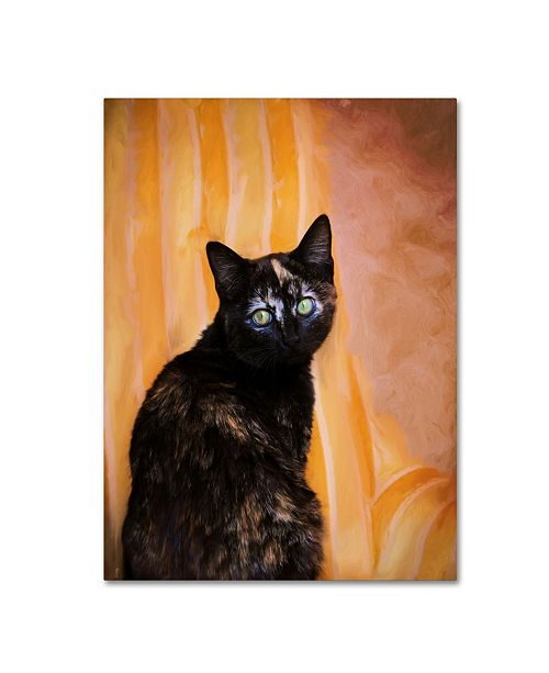 "Trademark Global Jai Johnson 'Royal Kitten' Canvas Art - 47"" x 35"" x 2"""