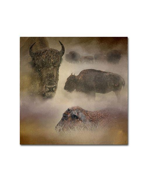 "Trademark Global Jai Johnson 'Buffalo Dreams' Canvas Art - 24"" x 24"" x 2"""
