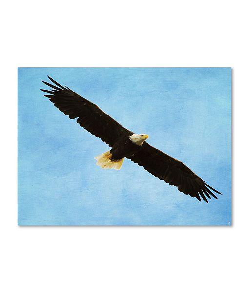 "Trademark Global Jai Johnson 'By His Grace Bald Eagle' Canvas Art - 19"" x 14"" x 2"""