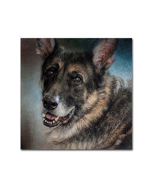 "Trademark Global Jai Johnson 'Portrait Of A Shepherd' Canvas Art - 18"" x 18"" x 2"""