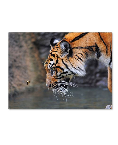 """Trademark Global Jai Johnson 'Risk Taker Bengal Tiger And Butterfly' Canvas Art - 24"""" x 18"""" x 2"""""""