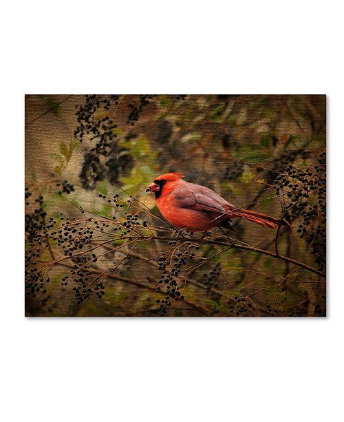 "Trademark Global Jai Johnson 'Song Of The Red Bird 2' Canvas Art - 19"" x 14"" x 2"""