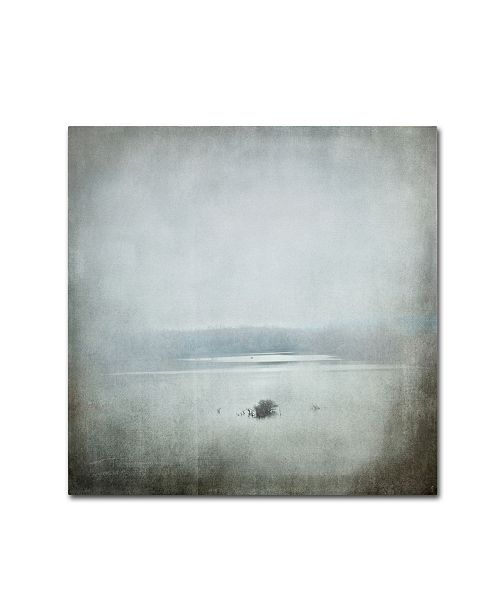 "Trademark Global Jai Johnson 'Foggy River' Canvas Art - 35"" x 35"" x 2"""