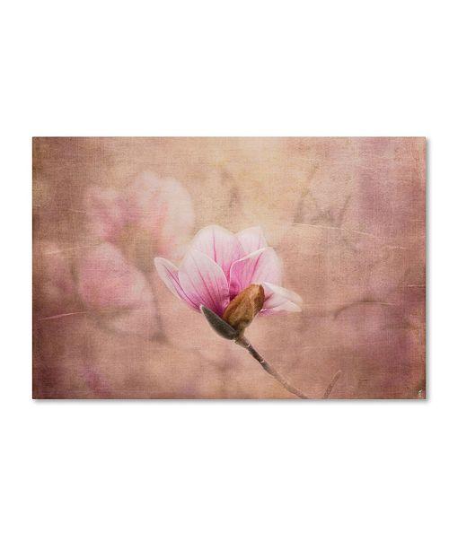 "Trademark Global Jai Johnson 'Pink Magnolia 2' Canvas Art - 32"" x 22"" x 2"""