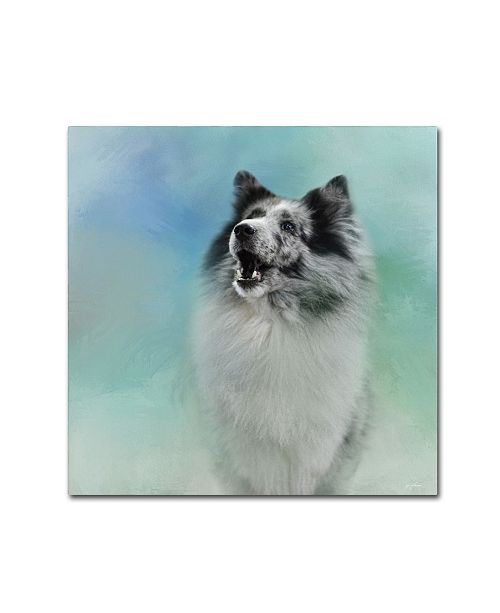 "Trademark Global Jai Johnson 'Something To Say Sheltie' Canvas Art - 24"" x 24"" x 2"""