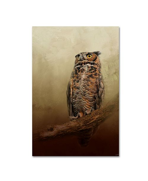 "Trademark Global Jai Johnson 'Great Horned Owl At Shiloh' Canvas Art - 24"" x 16"" x 2"""