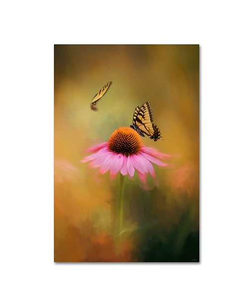 "Trademark Global Jai Johnson 'Butterflies At Play' Canvas Art - 47"" x 30"" x 2"""
