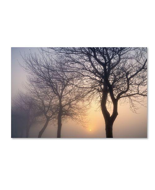 "Trademark Global Cora Niele 'Hazy Sunrise With Tree Tree Silhouettes' Canvas Art - 19"" x 12"" x 2"""