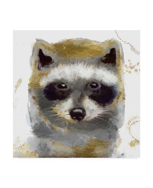 "Trademark Global Color Bakery 'Golden Forest Raccoon' Canvas Art - 24"" x 24"" x 2"""