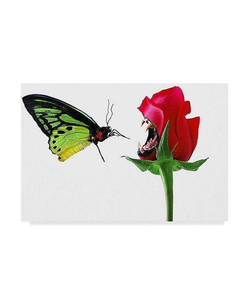 "Trademark Global Dana Brett Munach 'First Impressions' Canvas Art - 32"" x 22"" x 2"""