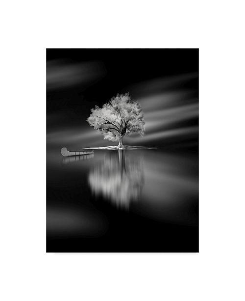 "Trademark Global David Senechal Photographie 'Quiet White Tree' Canvas Art - 18"" x 2"" x 24"""
