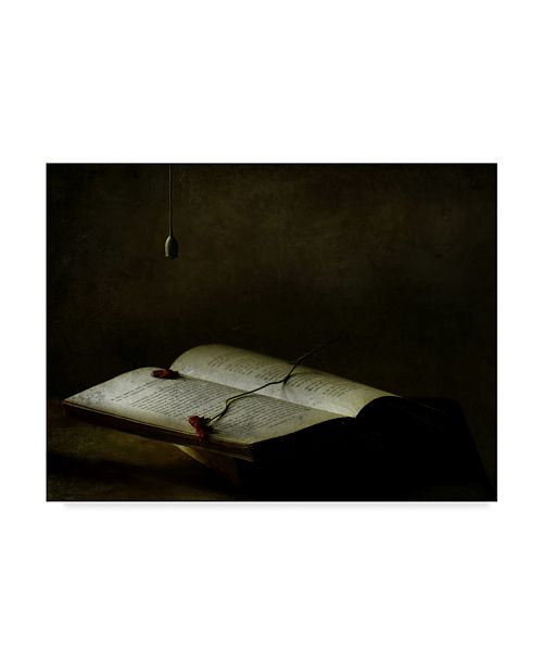 "Trademark Global Delphine Devos 'Light In The Wake Of Silence' Canvas Art - 19"" x 2"" x 14"""