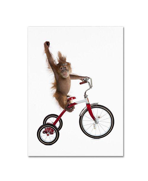 "Trademark Global J Hovenstine Studios 'Monkeys Riding Bikes #2' Canvas Art - 24"" x 18"" x 2"""