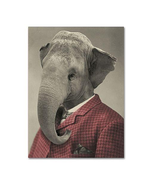 "Trademark Global J Hovenstine Studios 'Wild Animals #1' Canvas Art - 19"" x 14"" x 2"""