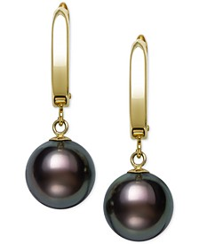 Cultured Tahitian Pearl (10-11mm) Drop Earrings in 14k Gold