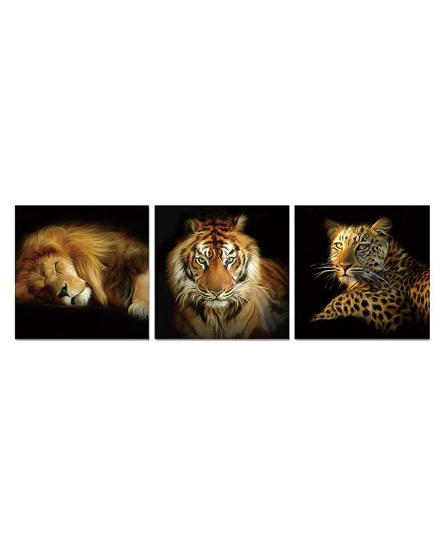 "Chic Home Decor Wild Safari 3 Piece Wrapped Canvas Wall Art Felines -16"" x 48"""