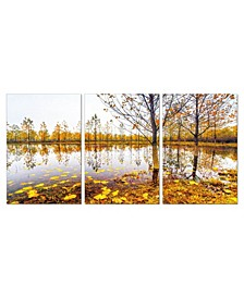 """Decor Falling Leaves 3 Piece Wrapped Canvas Wall Art Autumn -27"""" x 60"""""""
