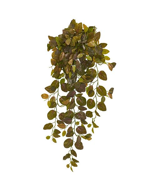 """Nearly Natural 36"""" Fittonia Hanging Bush Artificial Plant (Set of 2) (Real Touch)"""