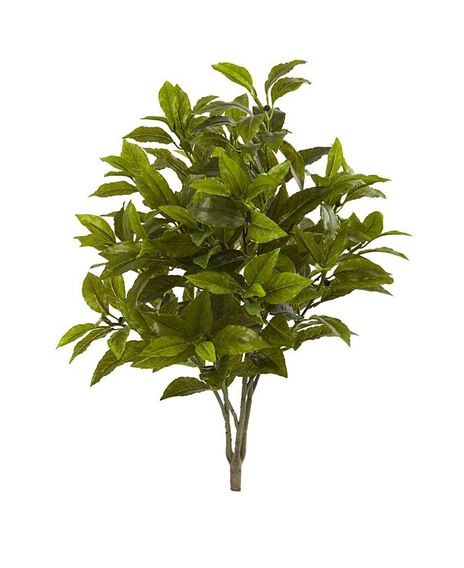 """Nearly Natural 26"""" Coffee Leaf Artificial Plant (Set of 2) (Real Touch)"""