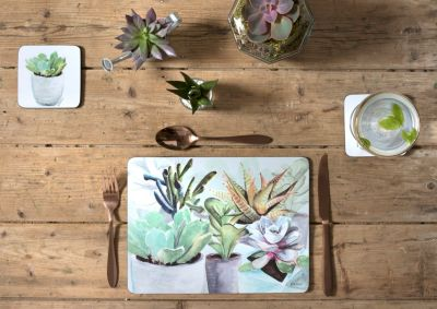 Succulents Set of 4 Placemats