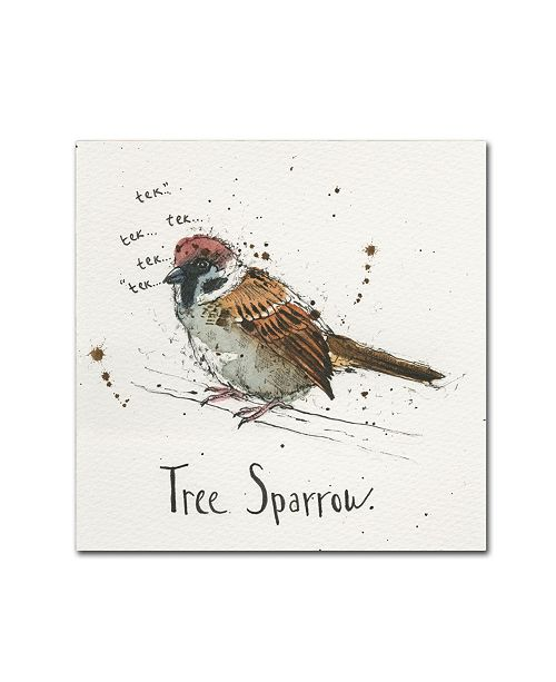 "Trademark Global Michelle Campbell 'Tree Sparrow' Canvas Art - 14"" x 14"" x 2"""