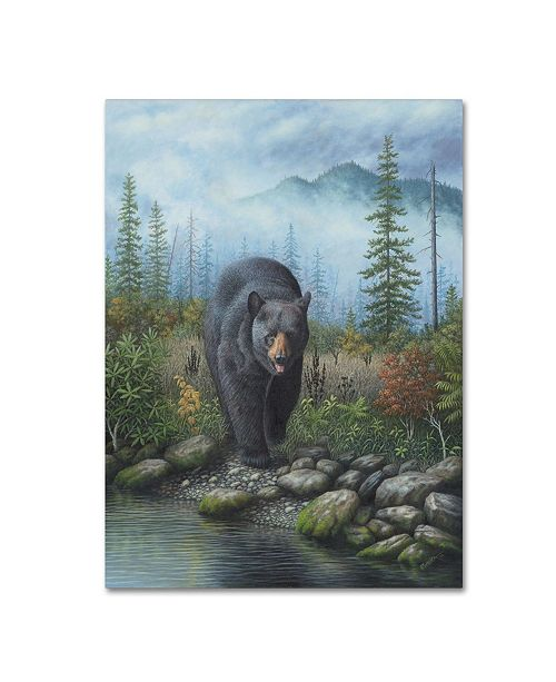 "Trademark Global Robert Wavra 'Smoky Mountain Black Bear' Canvas Art - 32"" x 24"" x 2"""