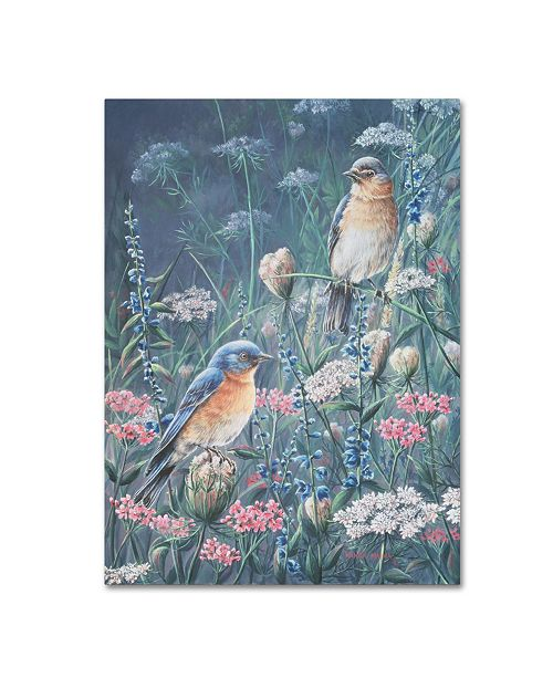 "Trademark Global Wanda Mumm 'Bluebird And Wildflowers' Canvas Art - 19"" x 14"" x 2"""