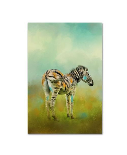 "Trademark Global Jai Johnson 'Summer Zebra 1' Canvas Art - 47"" x 30"" x 2"""