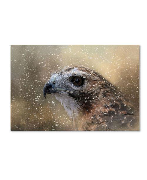 "Trademark Global Jai Johnson 'Winter Redtail' Canvas Art - 47"" x 30"" x 2"""