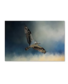 "Jai Johnson 'Winter Osprey' Canvas Art - 19"" x 12"" x 2"""